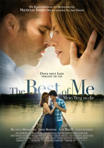 The Best of Me, Michael Hoffman