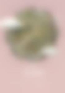The Bubble, Valerie Blankenbyl