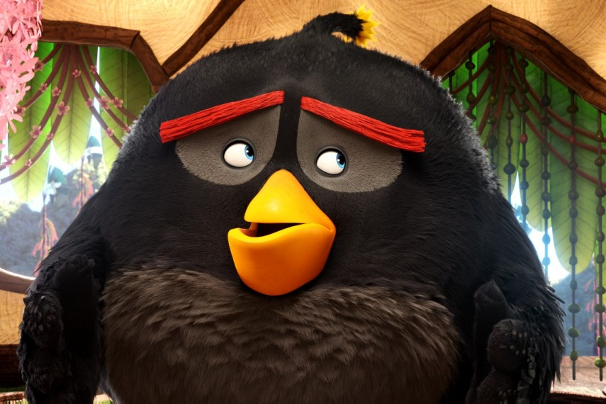 /db_data/movies/angrybirds/scen/l/410_06__Bomb.jpg