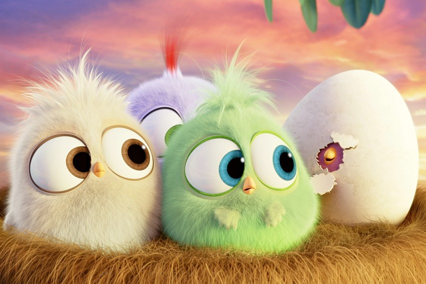/db_data/movies/angrybirds/scen/l/410_23_-_Scene_Picture.jpg
