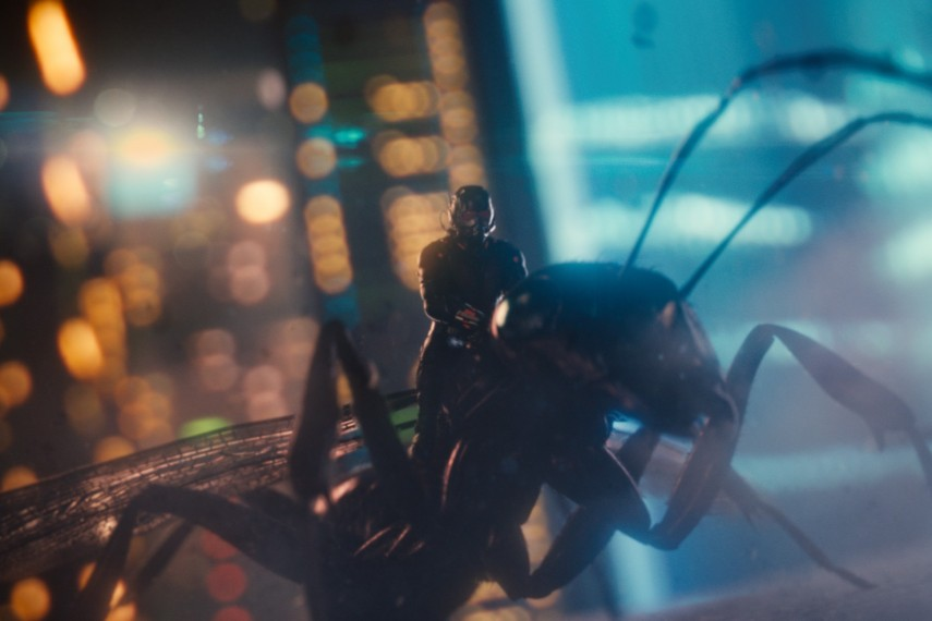 /db_data/movies/antman/scen/l/410_29__Scene_Picture.jpg