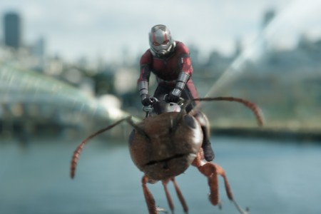 410_22_-_Ant-Man_Paul_Rudd.jpg