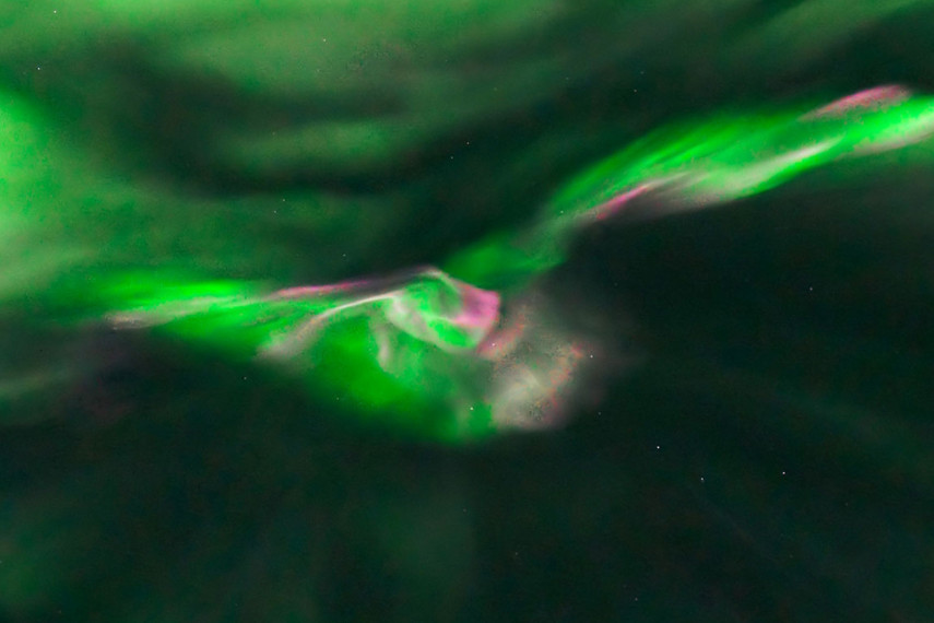/db_data/movies/auroralightsofwonder/scen/l/aurora_head1.jpg