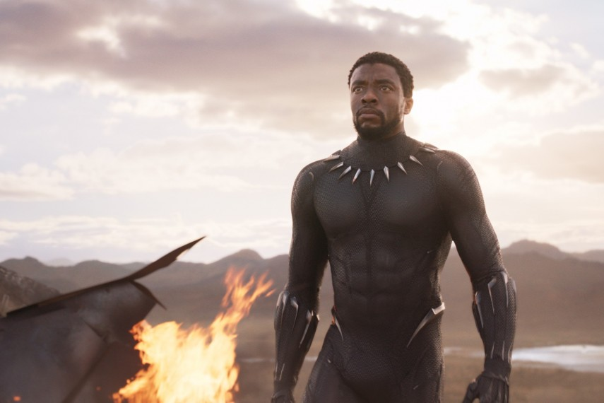 /db_data/movies/blackpanther/scen/l/410_04_-_Black_Panther_Chadwic.jpg