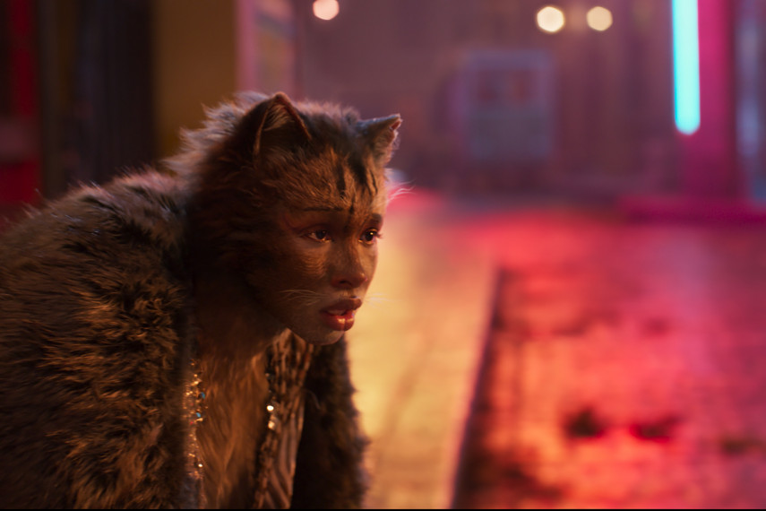 /db_data/movies/cats/scen/l/410_01_-_Scene_Picture_ov_org.jpg