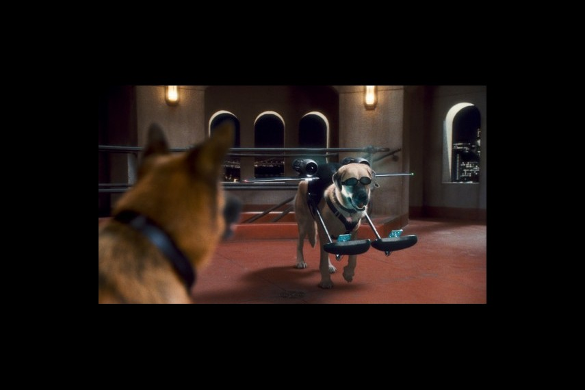 /db_data/movies/catsanddogs2/scen/l/1-Picture21-e6a.jpg