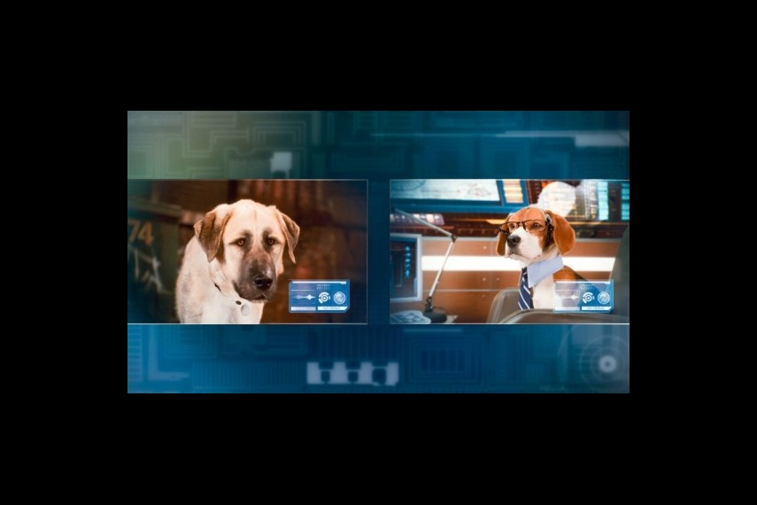 /db_data/movies/catsanddogs2/scen/l/1-Picture24-c4a.jpg