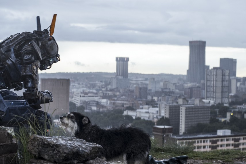 /db_data/movies/chappie/scen/l/410_01__Chappie_1400x573px_300dpi.jpg