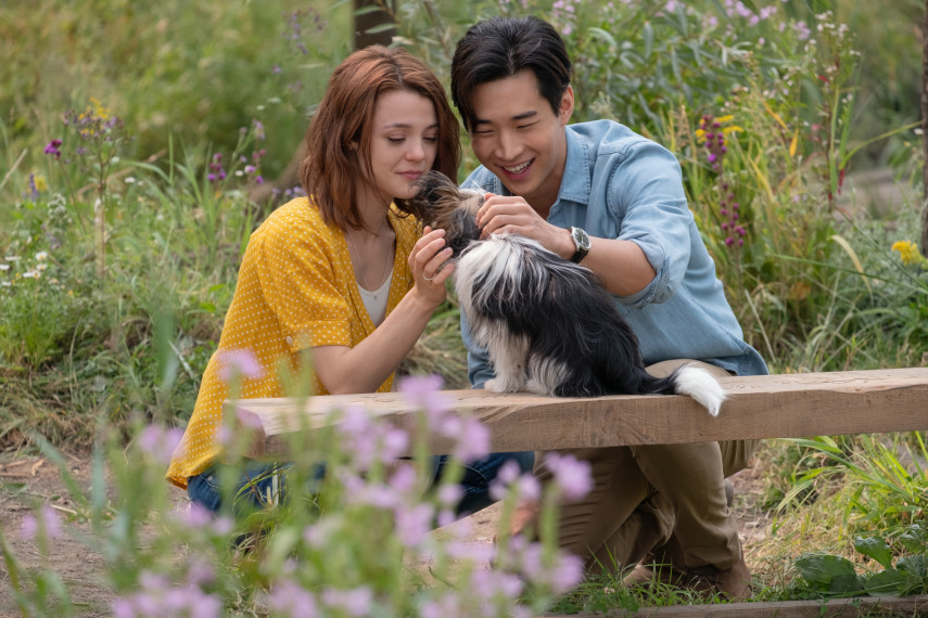 /db_data/movies/dogspurpose2/scen/l/14EE173D-D085-719C-710ADCDB71DD5E72.jpg
