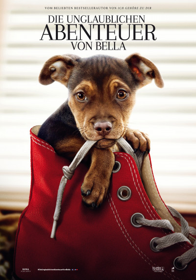 /db_data/movies/dogswayhome/artwrk/l/SONY_A_DOGS_WAY_HOME_TEASER_ON_1.jpg