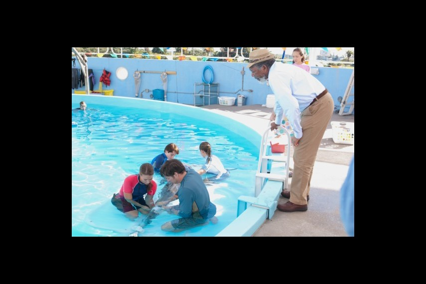 /db_data/movies/dolphintale/scen/l/1-Picture 10-4de.jpg