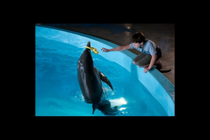 /db_data/movies/dolphintale/scen/l/1-Picture 4-ba6.jpg