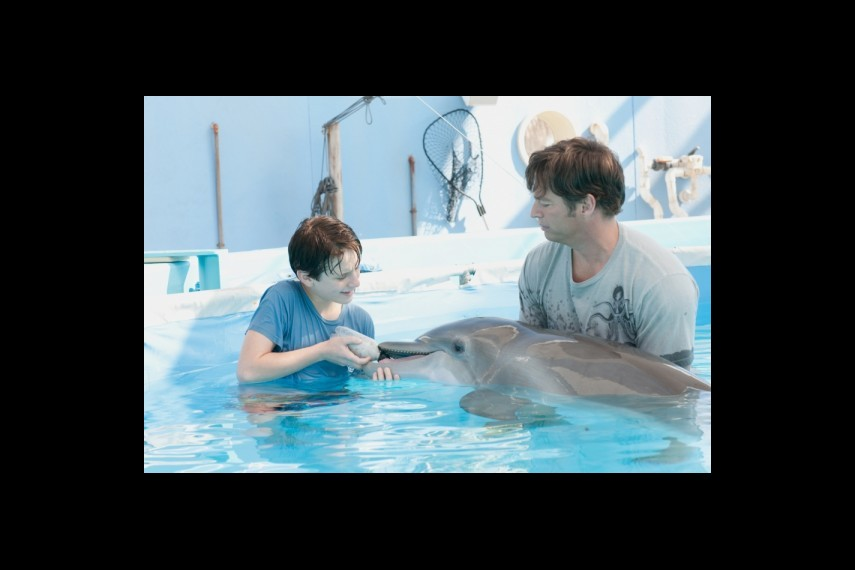 /db_data/movies/dolphintale/scen/l/1-Picture 8-a5e.jpg