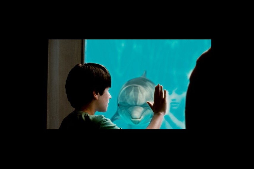 /db_data/movies/dolphintale/scen/l/1-Picture12-4be.jpg