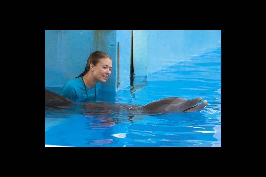 /db_data/movies/dolphintale/scen/l/1-Picture25-9be.jpg