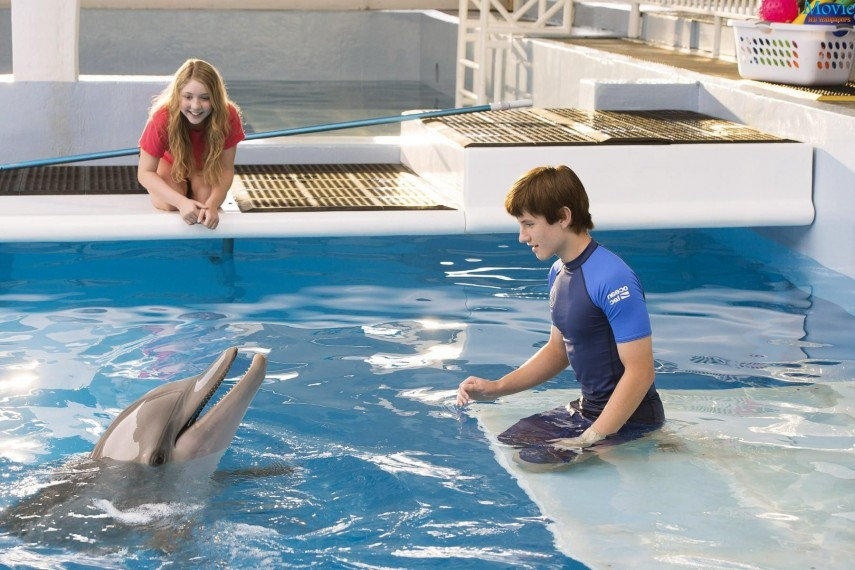 /db_data/movies/dolphintale2/scen/l/Watch-online-Dolphin-Tale-2.jpg
