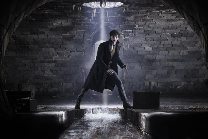 /db_data/movies/fantasticbeastsandwheretofindthem2/scen/l/529-Picture1-532.jpg