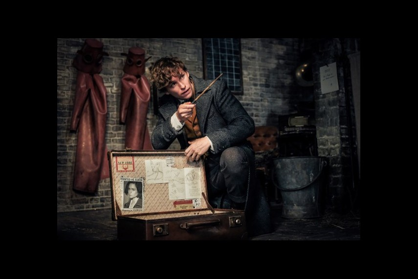 /db_data/movies/fantasticbeastsandwheretofindthem2/scen/l/529-Picture3-403.jpg