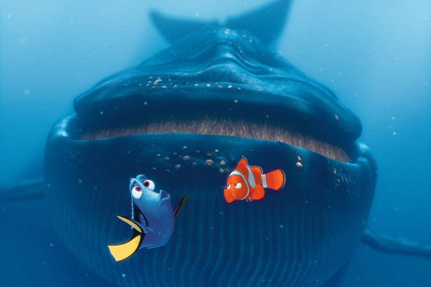 /db_data/movies/findingnemo/scen/l/FNC-115_rgb.jpg