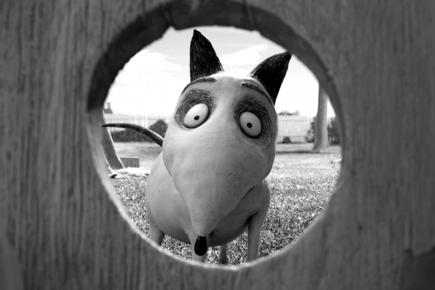 /db_data/movies/frankenweenie/scen/l/050_SP_0160.jpg