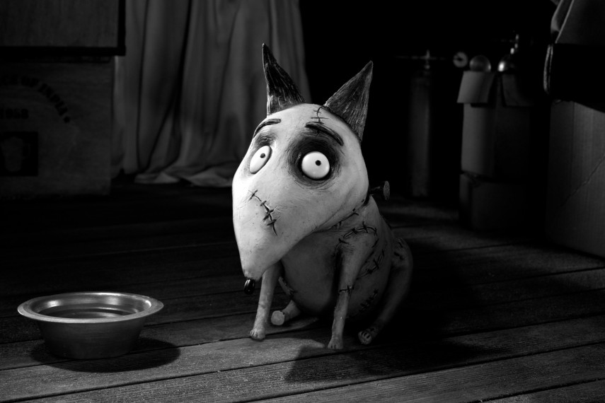 /db_data/movies/frankenweenie/scen/l/195_NG_0065.jpg