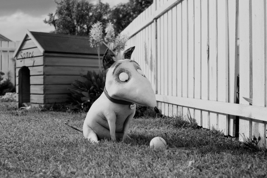 /db_data/movies/frankenweenie/scen/l/O_050_SP_0050_v004.0738.jpg