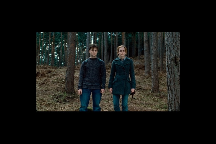 /db_data/movies/harrypotter7_1/scen/l/1-Picture140-723.jpg