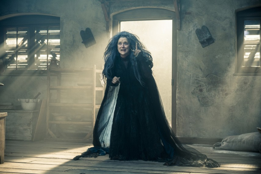 /db_data/movies/intothewoods/scen/l/410_08__The_Witch_Streep.jpg