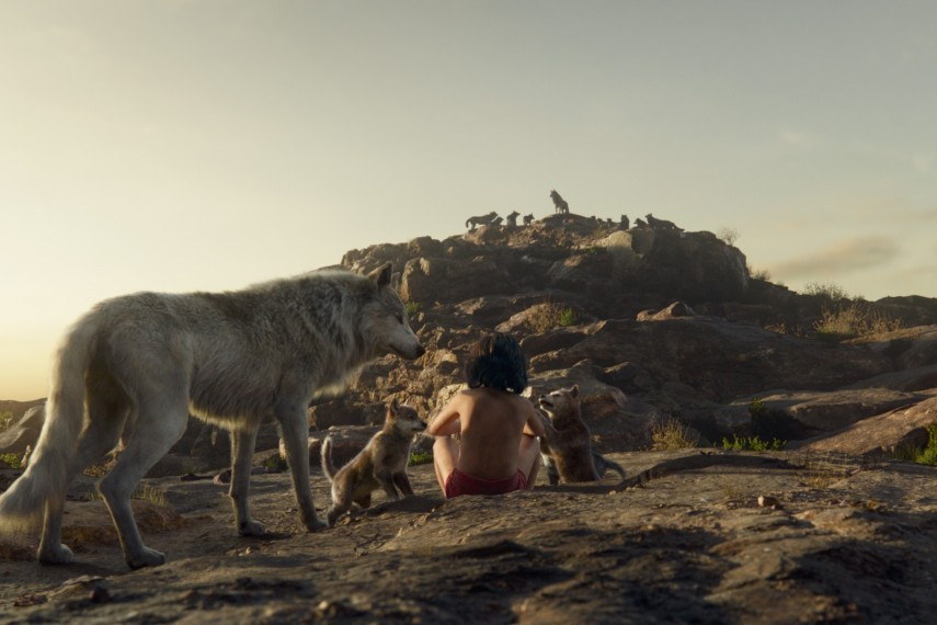 /db_data/movies/junglebook2015/scen/l/410_15_-_Scene_Picture.jpg