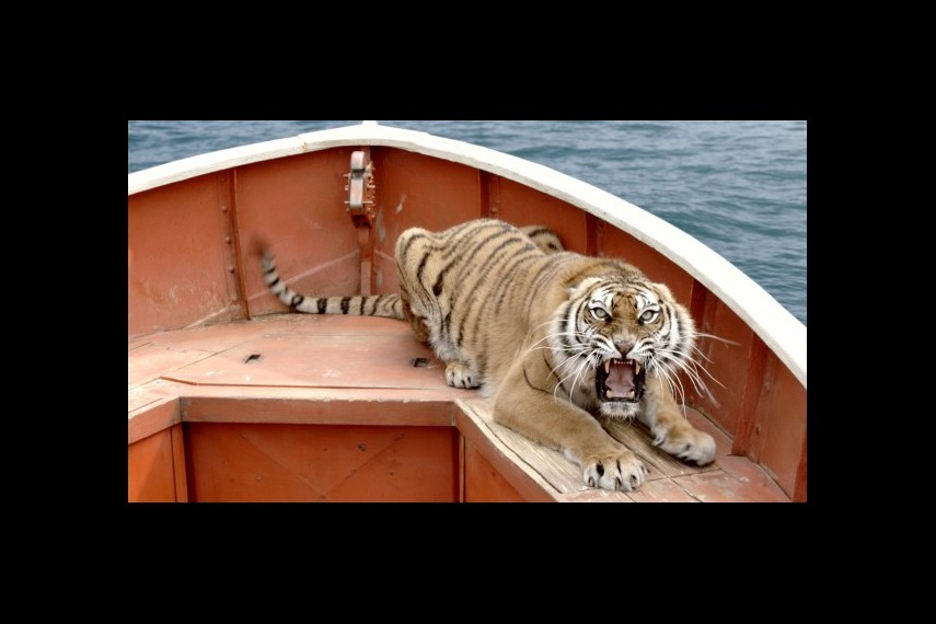 /db_data/movies/lifeofpi/scen/l/1-Picture15-3ce.jpg