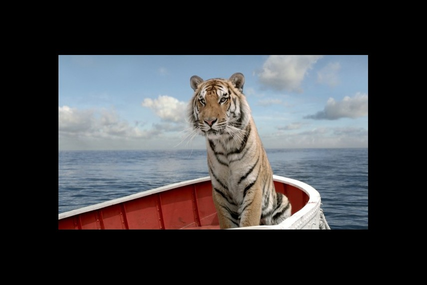 /db_data/movies/lifeofpi/scen/l/1-Picture31-05f.jpg