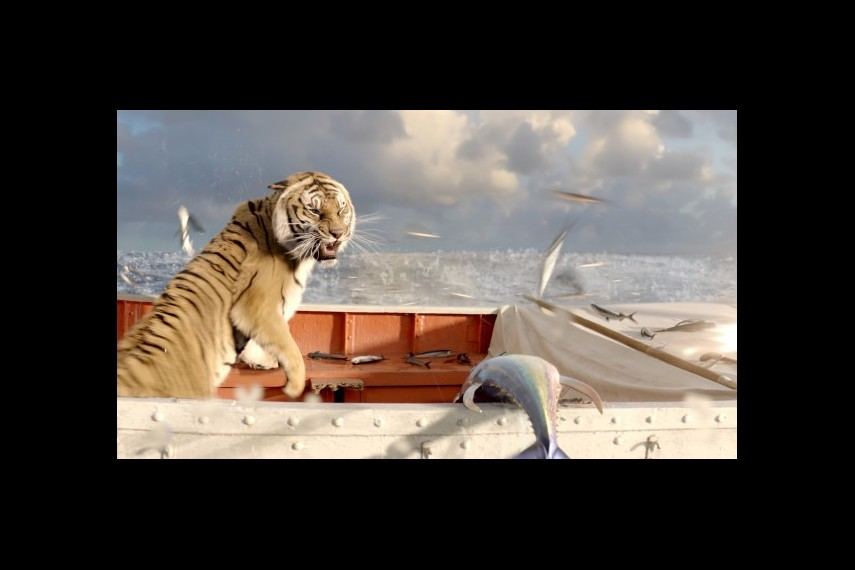 /db_data/movies/lifeofpi/scen/l/1-Picture38-dd3.jpg