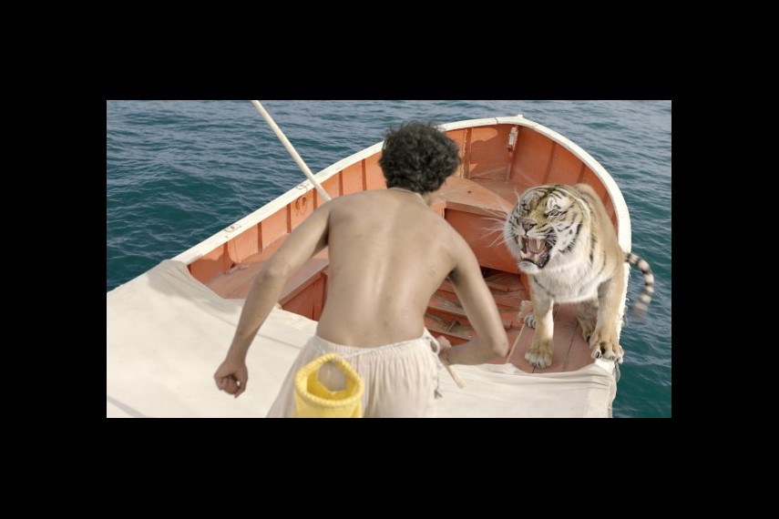 /db_data/movies/lifeofpi/scen/l/1-Picture46-cab.jpg