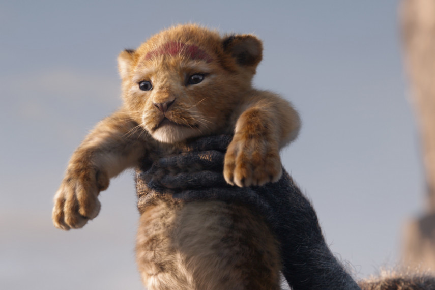 /db_data/movies/lionking2019/scen/l/410_01_-_Scene_Picture_ov.jpg