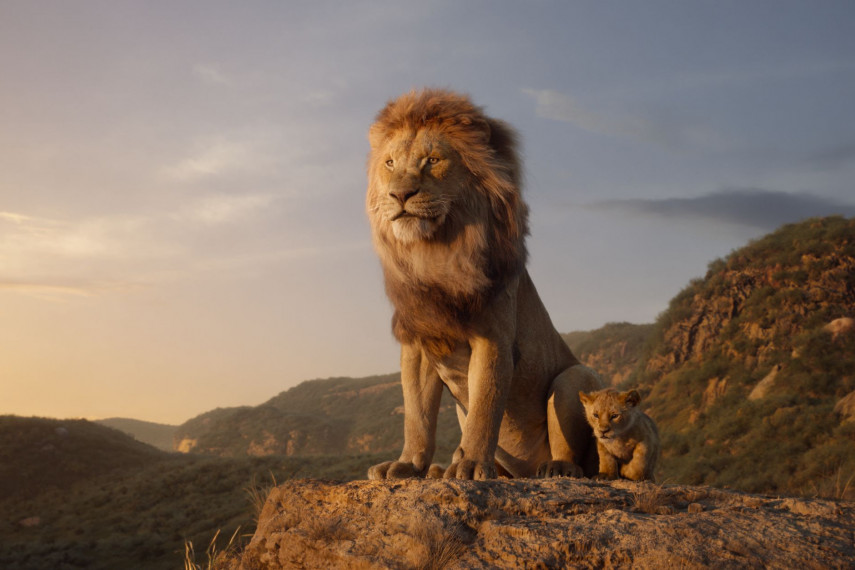 /db_data/movies/lionking2019/scen/l/410_02_-_Scene_Picture_ov_org.jpg
