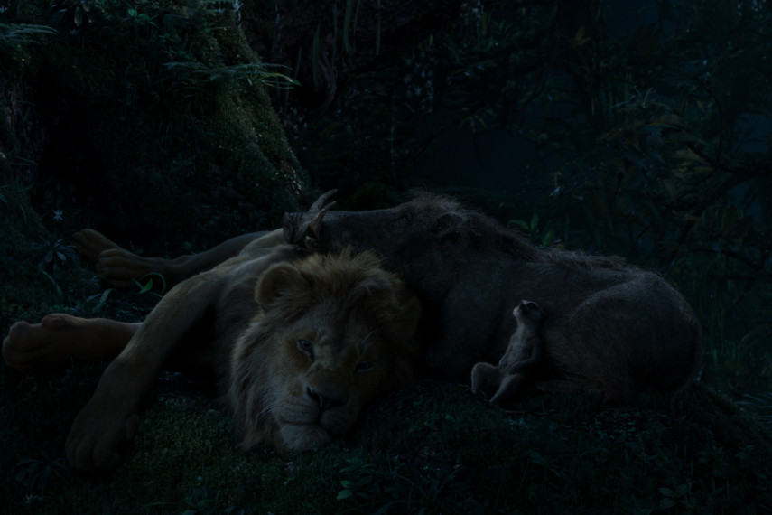 /db_data/movies/lionking2019/scen/l/410_06_-_Scene_Picture_ov_org.jpg
