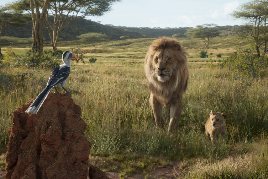 /db_data/movies/lionking2019/scen/l/410_09_-_Scene_Picture_ov_org.jpg