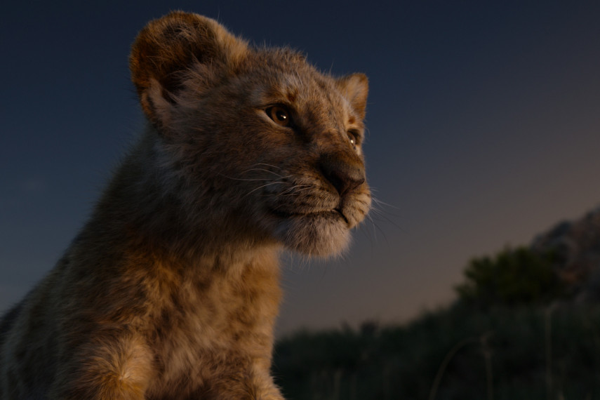 /db_data/movies/lionking2019/scen/l/410_13_-_Scene_Picture_ov_org.jpg