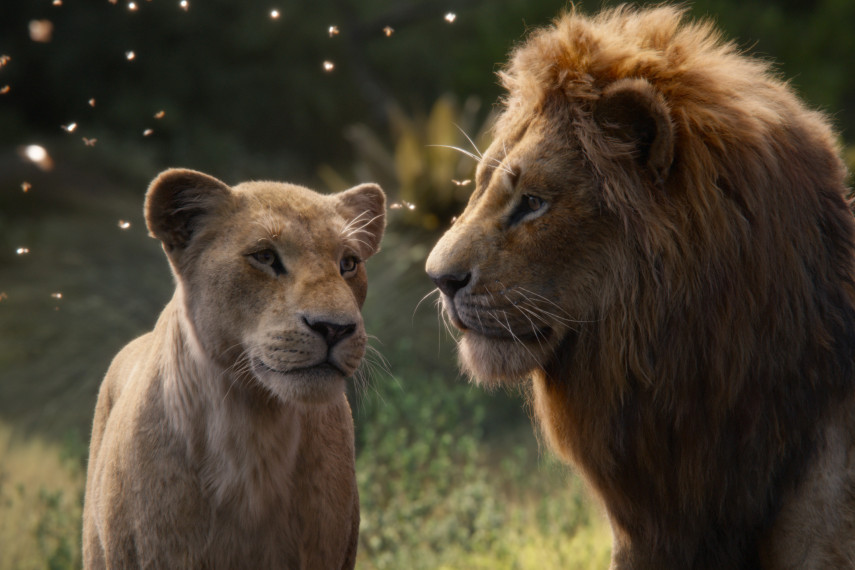 /db_data/movies/lionking2019/scen/l/410_16_-_Scene_Picture_ov_org.jpg