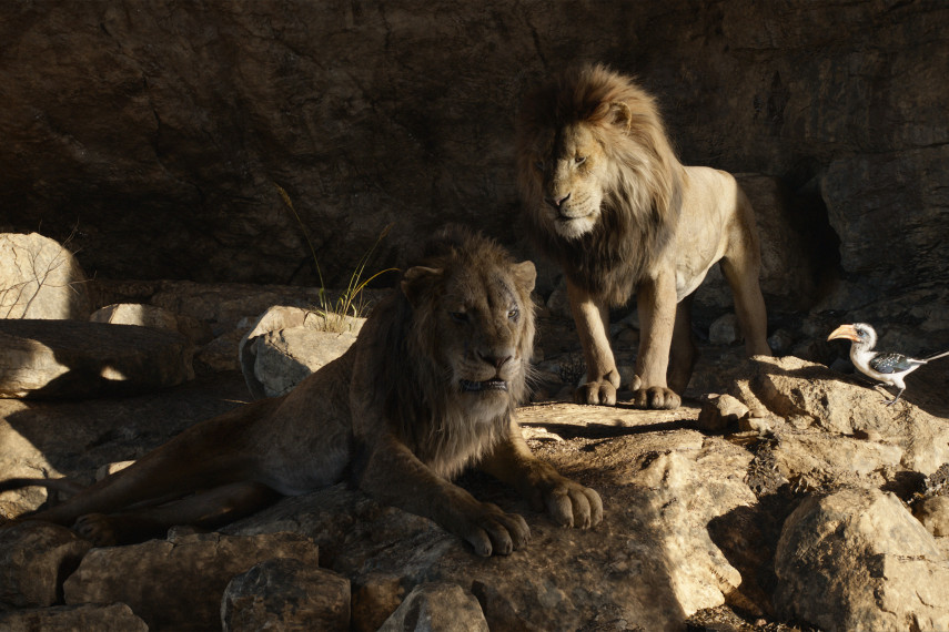/db_data/movies/lionking2019/scen/l/410_17_-_Scene_Picture_ov_org.jpg