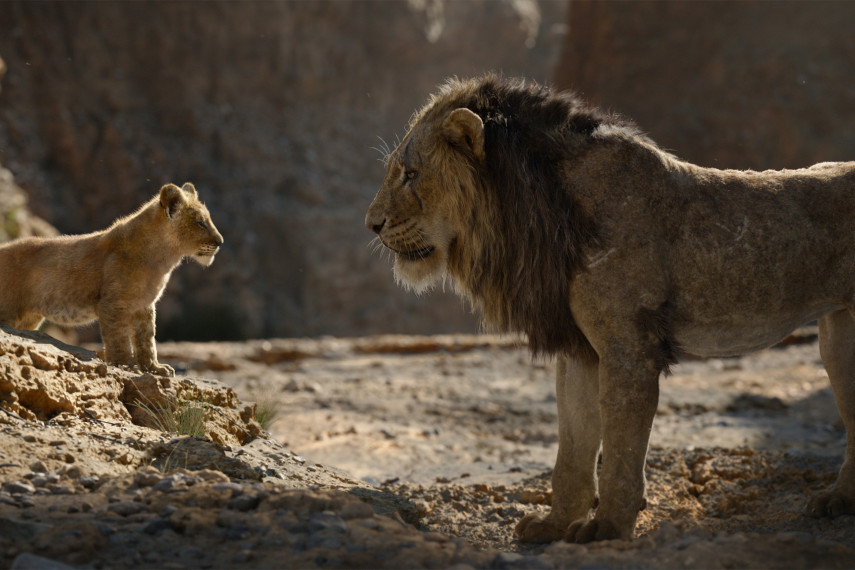 /db_data/movies/lionking2019/scen/l/410_18_-_Scene_Picture_ov_org.jpg
