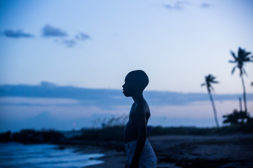 /db_data/movies/moonlight/scen/l/08_Moonlight_c_A24_DCM.jpg