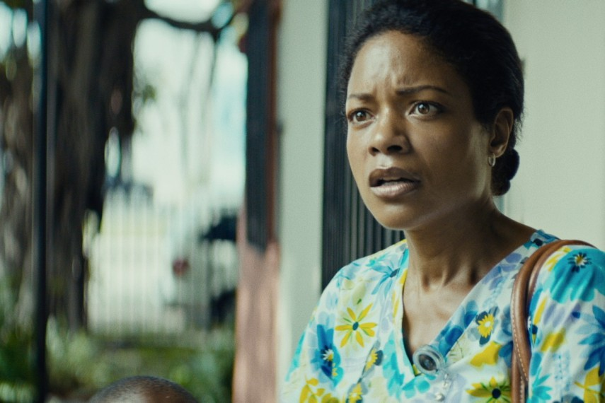/db_data/movies/moonlight/scen/l/14_Moonlight_c_A24_DCM.jpg