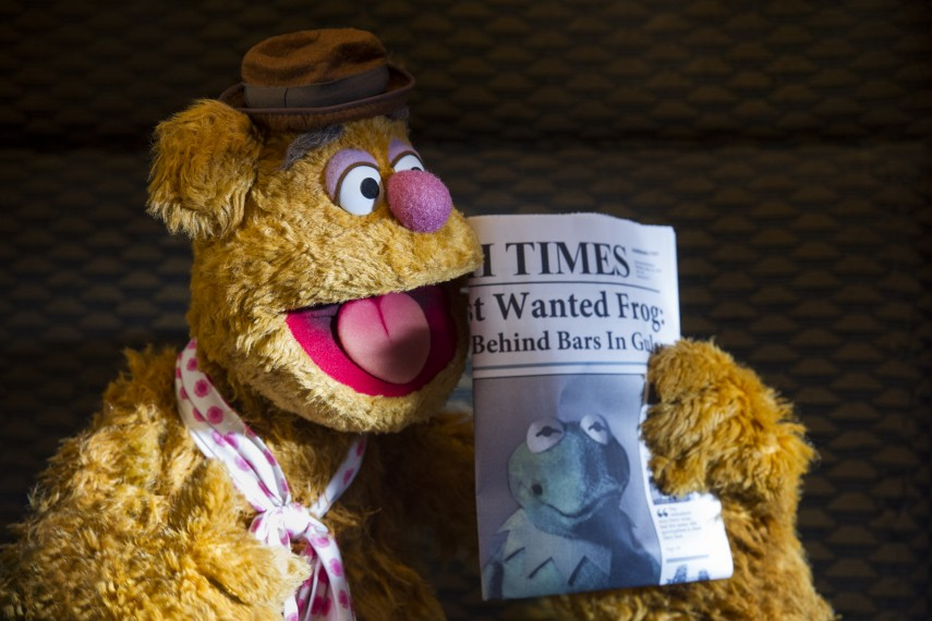 /db_data/movies/muppets2/scen/l/410_05__Fozzie_Bear_4256x2832px.jpg