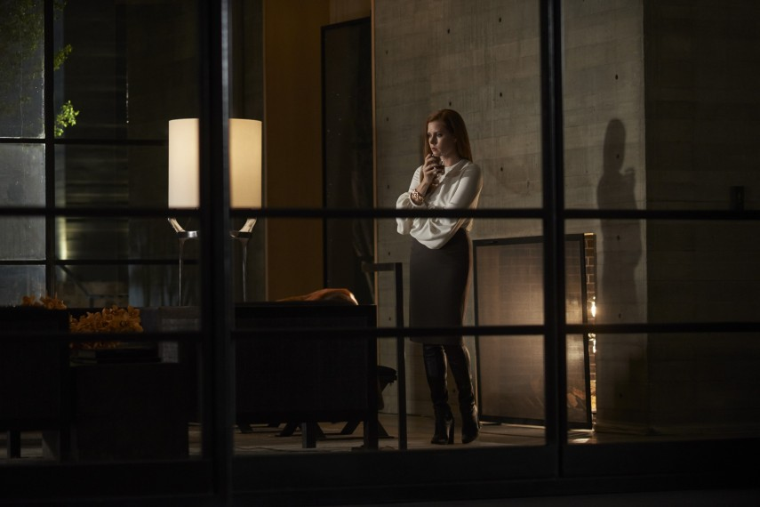 /db_data/movies/nocturnalanimals/scen/l/50805_AA_4609_v2.jpg