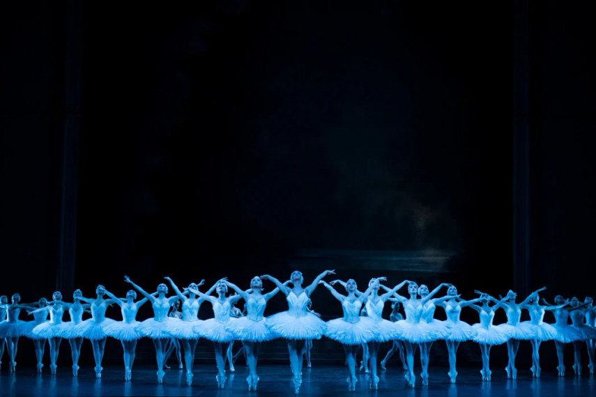 /db_data/movies/operanationaldeparisswanlake/scen/l/we6p3wsnjp9fdf2cf2wo.jpg