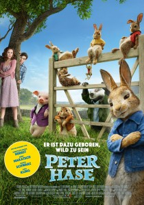 SONY_PETER_RABBIT_FENCE-ROSE_1.jpg