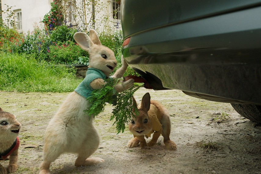 /db_data/movies/peterrabbit/scen/l/Peter-Rabbit_14.jpg