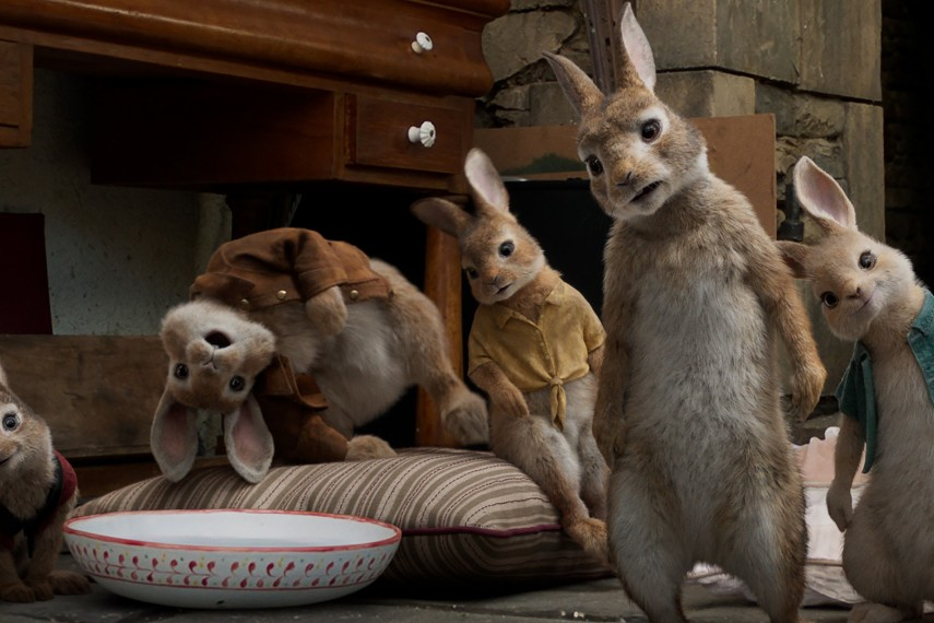 /db_data/movies/peterrabbit/scen/l/Peter-Rabbit_17.jpg