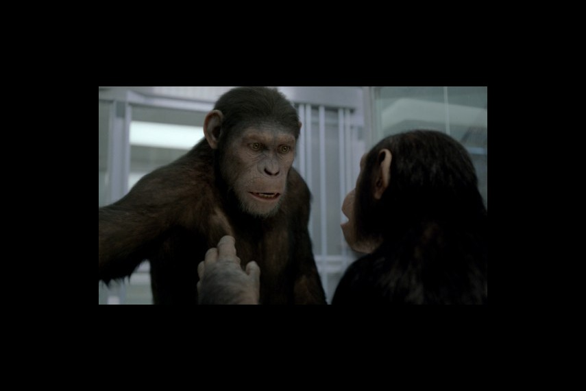 /db_data/movies/planetoftheapes2/scen/l/1-Picture16-e95.jpg